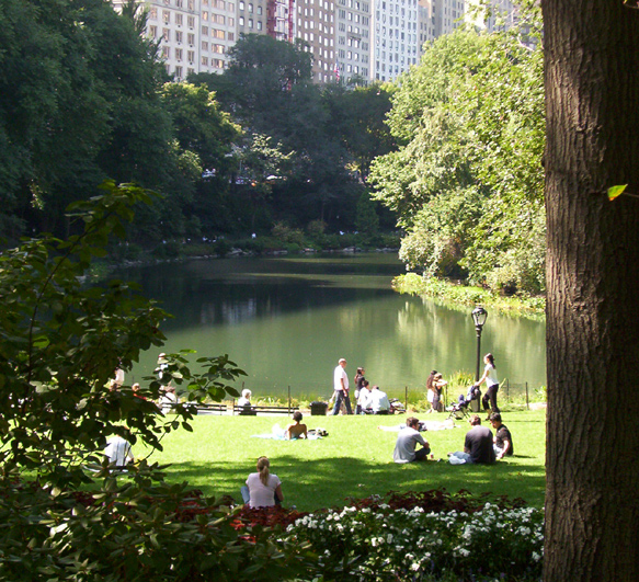 the role of urban parks for In urban park access and programming including a synthesis of best practices and sample strategies for engaging urban the changing role of urban parks.