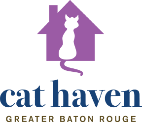 Cat Haven - Project Survival