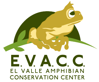 El Valle Amphibian Conservation Center