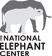 The National Elephant Center