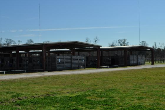 Farr Park Equestrian Center And RV Campground